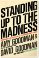 Standing Up To the Madness ~ book cover